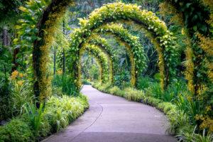 the-linq-at-bueaty-world-botanic-gardens-Singapore